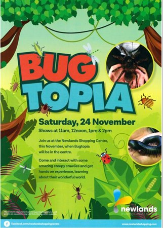 Bugtopia Saturday 24th November